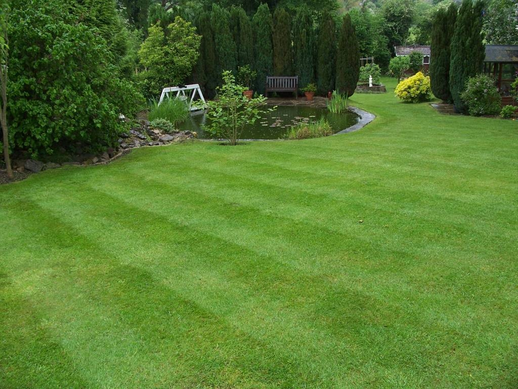 Notice the lawn is becoming more stripey!